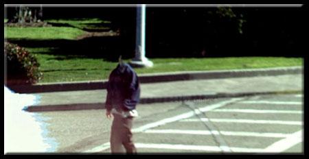 Google Street View Headless